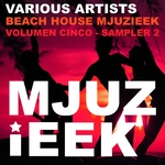Beach House Mjuzieek (Vol 5 Sampler 2)