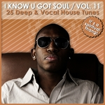 I Know U Got Soul Vol 11
