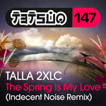 The Spring Is My Love (Indecent Noise remix)