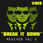 Break It Down (remixes Vol 2)