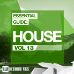 Essential Guide (House Vol 13)