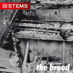 The Brood - Live Mixes
