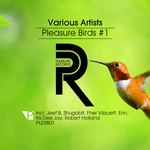 Pleasure Birds #1