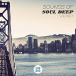 Sounds Of Soul Deep Vol 7
