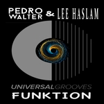 Funktion (Lee Haslam Tech Groove remix)