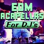 EDM Acapellas For DJ's