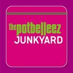 Junkyard (remixes)