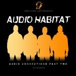 Audio Connections Part 2