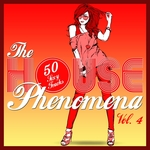 The HOUSE Phenomena (50 Sexy Tracks Vol 4)
