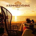 A Summer Evening Vol 05