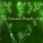 Top Summer Breaks 2015