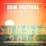 EDM Festival Summer 2015