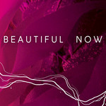 Beautiful Now (instrumental version)