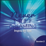 Never Stop Dreaming Vol 2: Dreaming Chill Tunes