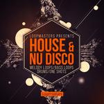 House & Nu Disco (Sample Pack WAV)