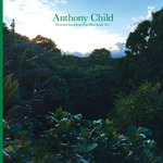 ANTHONY CHILD - Electronic Recordings From Maui Jungle Vol 1 (Front Cover)