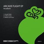 Arcade Flight EP