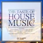 The Taste Of House Music Vol 12