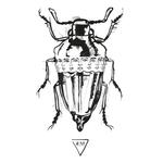 Bug Of June