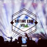 Bigtime EDM Vol 1