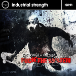 Fuck The System Remixes Pt 1