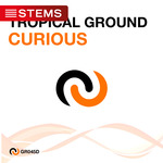 TROPICAL GROUND - Curious (Front Cover)