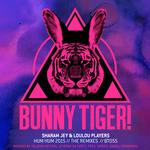 Hum Hum 2015 (The Remixes)
