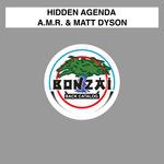 AMR & MATT DYSON - Hidden Agenda (Front Cover)