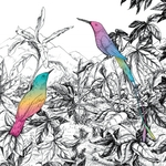 A VISION OF PANORAMA - Two Birds (Front Cover)