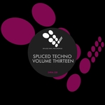 Spliced Techno Vol 13