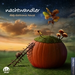 Nachtwandler Vol0 13 - Deep Electronic House