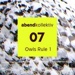 Owls Rule 1