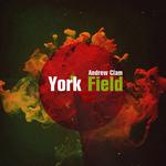 York Field