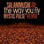 SALAMMUSIK - The Way You Fly (Front Cover)