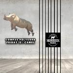 Friday 13/Camel
