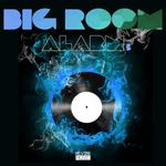 Big Room Alarm Vol 5