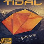 Good Trip EP