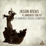 Flamenco House Sampler