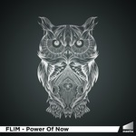 FLIM - Power Of Now (Front Cover)