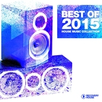 Best Of 2015: House Music Collection