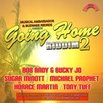 Going Home Riddim Vol 2 (Presented By Musical Ambassador & Buzwakk Records)