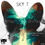 After The Birds EP