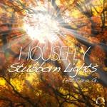 Stubborn Lights