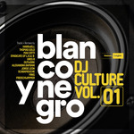 Blanco Y Negro DJ Culture Vol 1 (unmixed tracks)