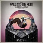 Walk Into The Night