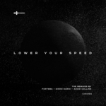 Lower Your Speed: The Remixes