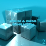Drum & Bass Sensation Vol 2