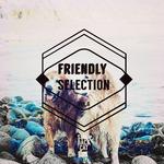 Friendly Selection Vol 6