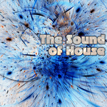 The Sound Of House
