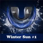 Winter Sun #1